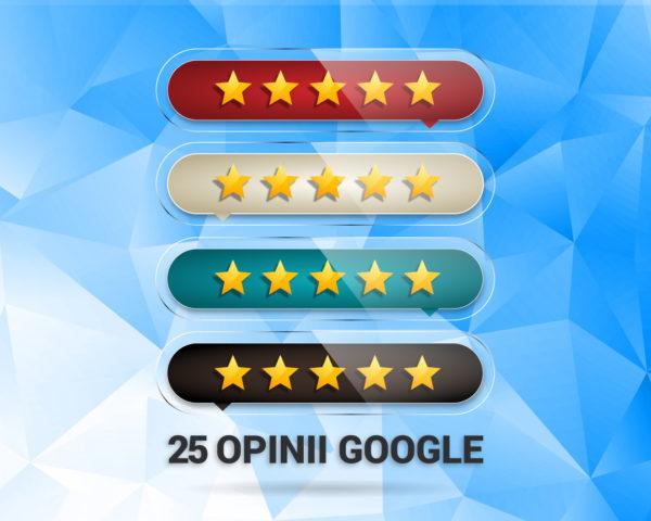 25-opinii-google